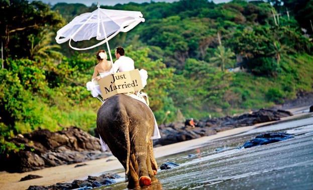 Фото свадебной прогулки